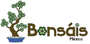 icon_bonsáis